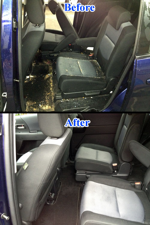 before and after auto detailing delaware county