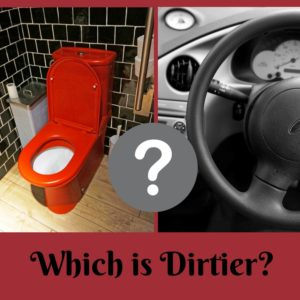 Is a toilet seat or a steering wheel ditier