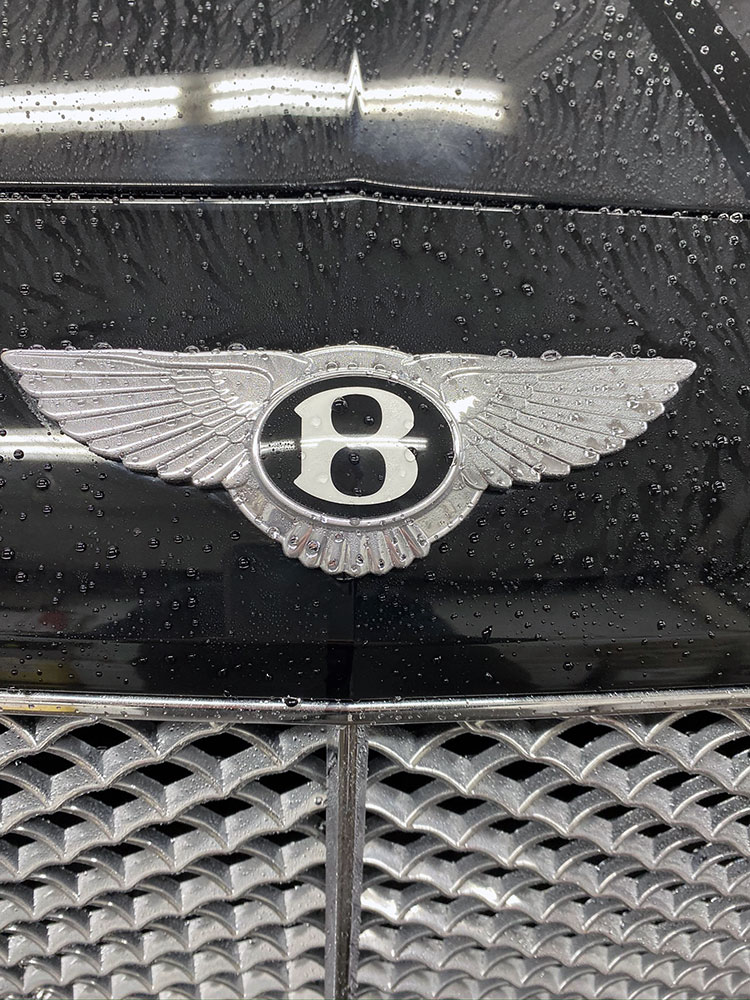 Bentley logo after a rinse